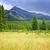 montagna · stormy · panorama · panorama · escursionisti · piedi - foto d'archivio © elenaphoto
