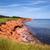 prince edward island coastline stock photo © elenaphoto