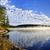 Autumn lake shore with fog stock photo © elenaphoto