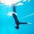 Female diving downwards in swimming pool stock photo © ElinaManninen