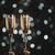 dekoratív · pezsgő · üveg · sötét · esküvő · buli - stock fotó © elisanth