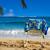 branco · folhas · de · palmeira · oceano · toalha · céu - foto stock © EllenSmile