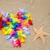 forma · de · coração · starfish · praia · flores · amor · natureza - foto stock © EllenSmile