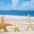 3 ·  · ビーチ · 砂浜 · 水 · 魚 · 海 - ストックフォト © EllenSmile
