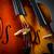 скрипки · инструментальный · иллюстрация · музыку · смешные - Сток-фото © elnur