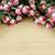 mooie · steeg · bloemen · exemplaar · ruimte · tekst · bloem - stockfoto © elnur
