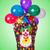 grappig · clown · geïsoleerd · witte · glimlach · verjaardag - stockfoto © elnur