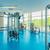 гантели · современных · спортивных · клуба · оборудование - Сток-фото © elnur