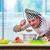 szakács · kés · merőkanál · fehér · átfogó · konyha - stock fotó © elnur