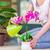 nő · elvesz · törődés · növény · izolált · fehér - stock fotó © elnur
