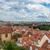 telhados · Praga · topo · ver · azulejos · velho - foto stock © elnur