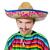 面白い · 小さな · メキシコ料理 · 偽 · 口ひげ · 孤立した - ストックフォト © elnur