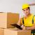homme · cases · maison · déplacer · maison · camion - photo stock © elnur