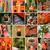 santuário · quioto · Japão · japonês · Ásia · caminho - foto stock © elwynn