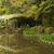vermelho · costa · japonês · jardim · paisagem · projeto - foto stock © elwynn