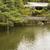 santuário · lanternas · um · templo · quioto · Japão - foto stock © elwynn