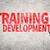 képzés · fejlesztés · oktatási · üzlet · szó · világoszöld - stock fotó © elwynn