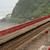 鉄道 · 海岸 · 海岸線 · 鉄道 · トラック · 森林 - ストックフォト © elwynn