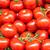 geserveerd · omhoog · saus · kerstomaatjes · voedsel - stockfoto © elxeneize