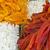 misto · secar · frutas · coleção - foto stock © elxeneize