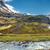 scenery in the mjoifjordur iceland stock photo © elxeneize