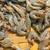 fresh shrimps stock photo © elxeneize