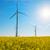 szélturbina · napsütés · tiszta · energia · kék · ég · fű · technológia - stock fotó © elxeneize