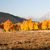 огня · цвета · лес · природы · деревья · гор - Сток-фото © emattil