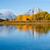 鳥 · 湖 · 公園 · 反射 · 水 · 旅行 - ストックフォト © emattil