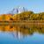düşmek · orman · yansımalar · renkli · sonbahar · ağaçlar - stok fotoğraf © emattil