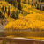 golden autumn scenic stock photo © emattil