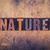 nature concept wooden letterpress type stock photo © enterlinedesign