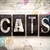 кошки · Vintage · тип · слово · написанный - Сток-фото © enterlinedesign