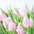 rosa · tulipas · flores · buquê · fresco · luz - foto stock © Epitavi