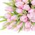pembe · lale · çiçekler · buket · taze - stok fotoğraf © Epitavi