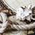失わ · エクスプローラ · 古地図 · 眼鏡 · 見える - ストックフォト © epitavi