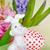 Pasen · konijn · ei · roze · Blauw · bloemen - stockfoto © Epitavi