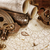 antigo · estilo · aventura · conchas · mineral · espécime - foto stock © epitavi