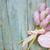 flowers and gift box stock photo © epitavi