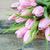 pembe · lale · çiçekler · buket · taze · kapalı - stok fotoğraf © Epitavi