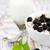bowl of muesli with blackberries stock photo © es75