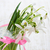bouquet of snowdrop flowers stock photo © es75