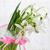 monte · flores · com · sombra · lugar · primavera · natureza - foto stock © es75