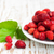 wild strawberry in a plate stock photo © es75