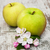 elma · elma · ağacı · ahşap · gıda · yaprak - stok fotoğraf © es75