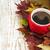 sonbahar · yaprakları · kahve · fincanı · ahşap · bo · doğa · arka · plan - stok fotoğraf © es75