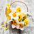 mand · narcissen · witte · narcis · bloemen - stockfoto © es75