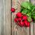 vers · radijs · bos · houten · kom · voedsel - stockfoto © es75