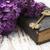 сирень · цветы · старые · книги · бумаги · весны - Сток-фото © es75