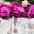 pink peony stock photo © es75